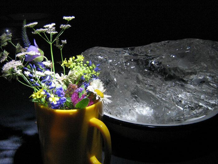 Июньский лед (лед взят из пещеры Кургазак на реке Ай)