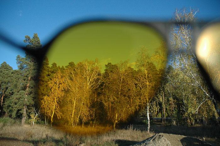 Сквозь зеленые очки