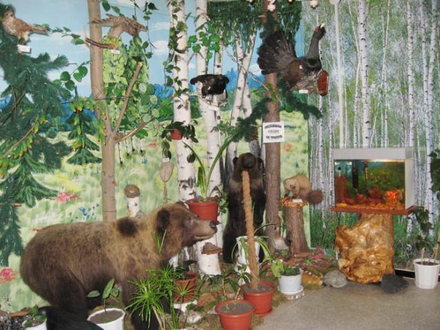 В краеведческом музее в г. Пласте есть даже маленький кусочек леса