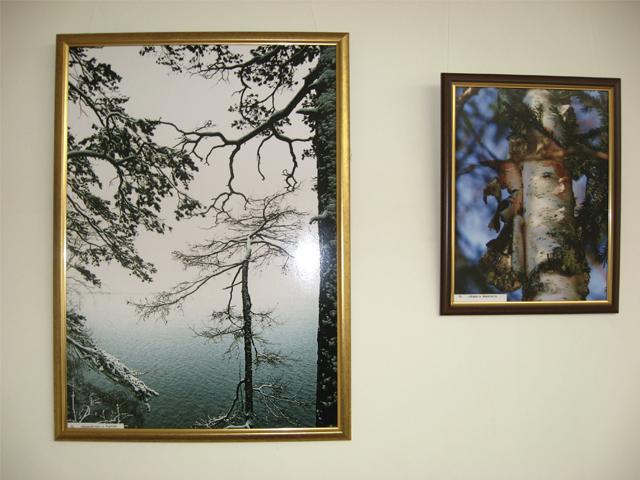 Фоторепортаж с выставки Олега Прокопьева Урал глазами казаха