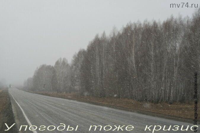 Лошади и снег. Апрель 2009