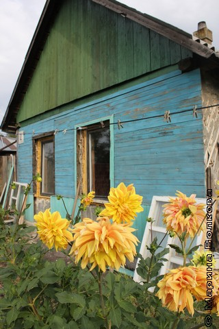 Домик в посёлке Роза