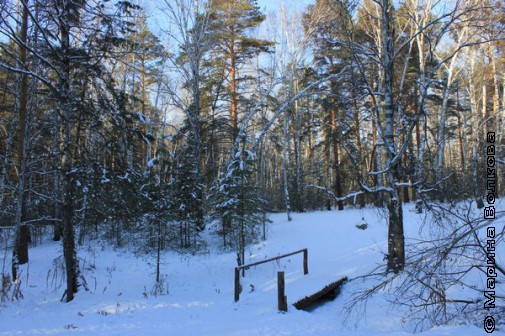 Щедрая зима