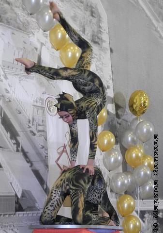 Уральские ящерицы