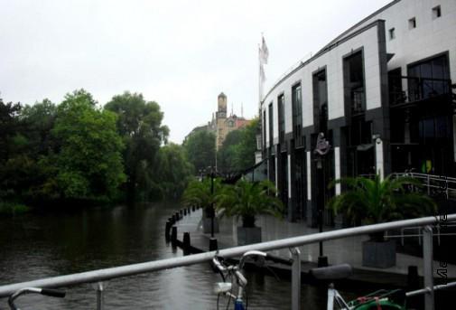 Деревья вдоль каналов Амстердама