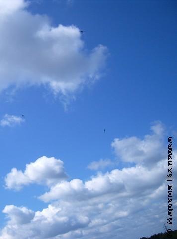 В опаловых облаках свободен полёт птах