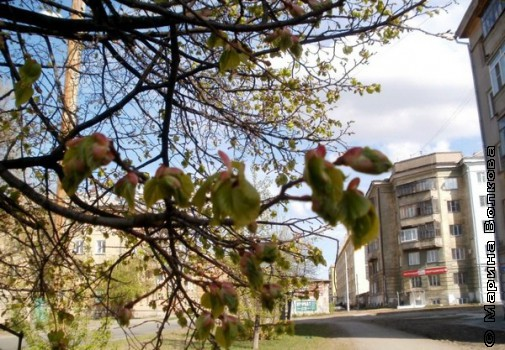 Май 2012. На улице Ловина