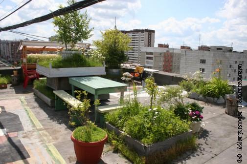 Сад на крыше девятиэтажки