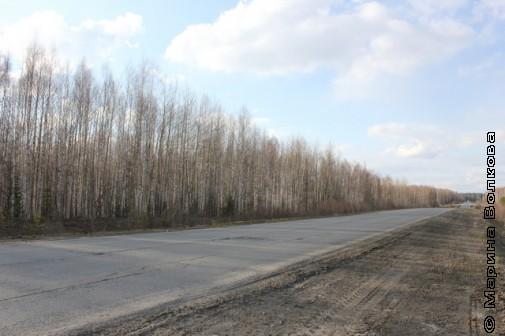 Вдоль дороги Тобольск-Сургут