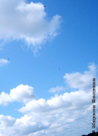 Как за жемчугом,  в небо отважно ныряют стрижи