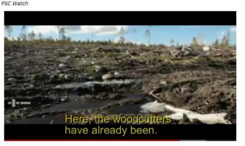 """Подпись на кадре: """"Здесь лесорубы уже побывали""""."""