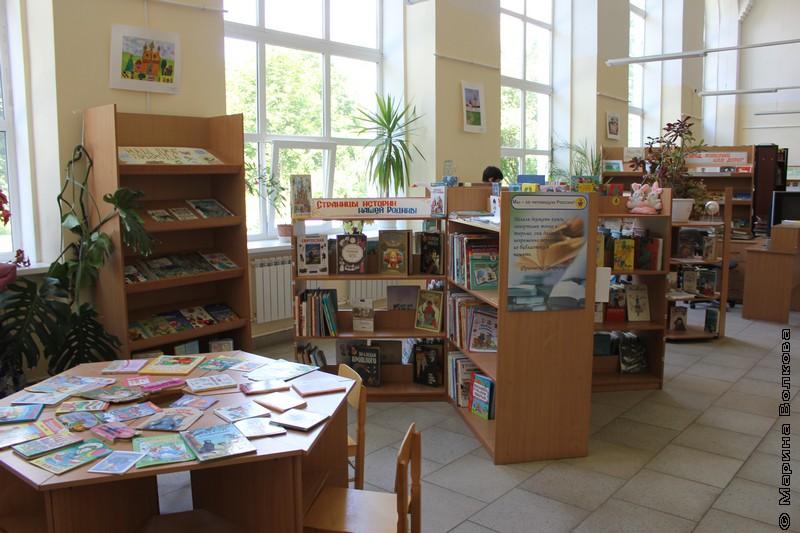 Ростовская библиотека