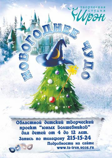 Новогоднее чудо 2013