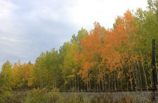 Железная дорога осенью