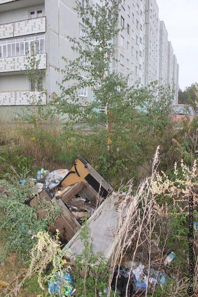 Свалка у дома № 8 по улице Ленина, Касли