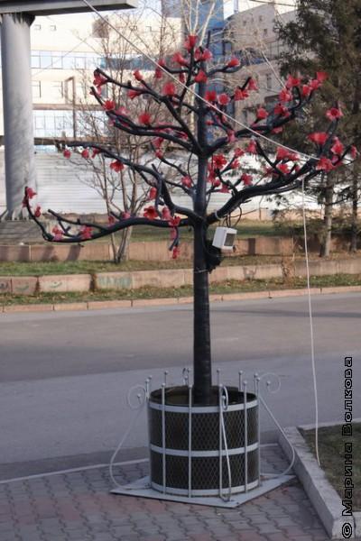 Памятник дереву