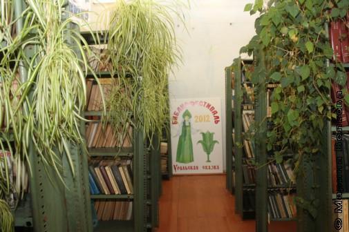 Библиотека в Новой Пристани