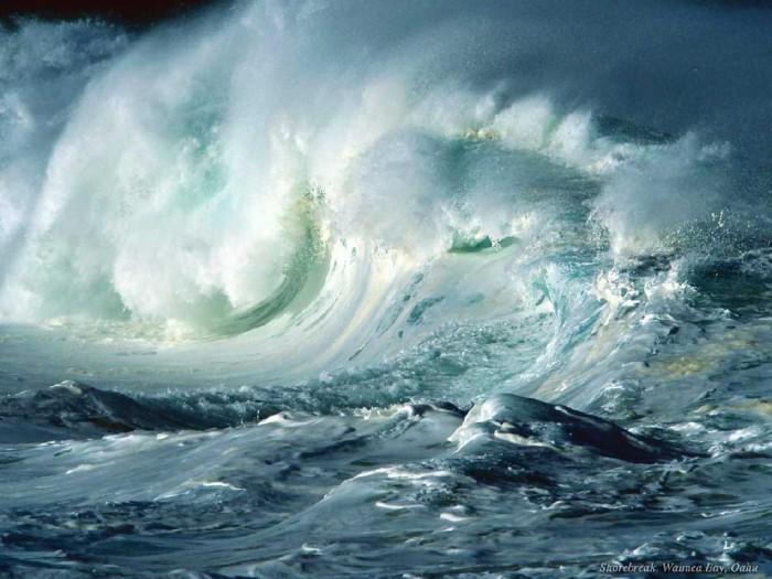 «океан учит меня жить»