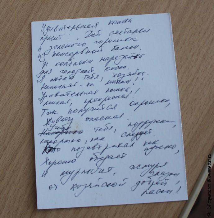 Мяу-эстафета в библиотеке Пушкина