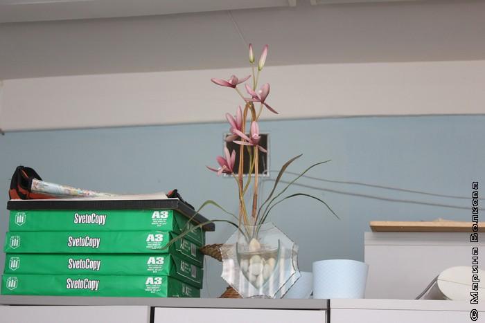 Бумага, цветы, библиотека