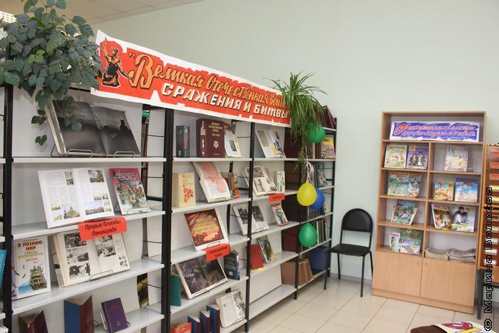 библиотека Долгодеревенское