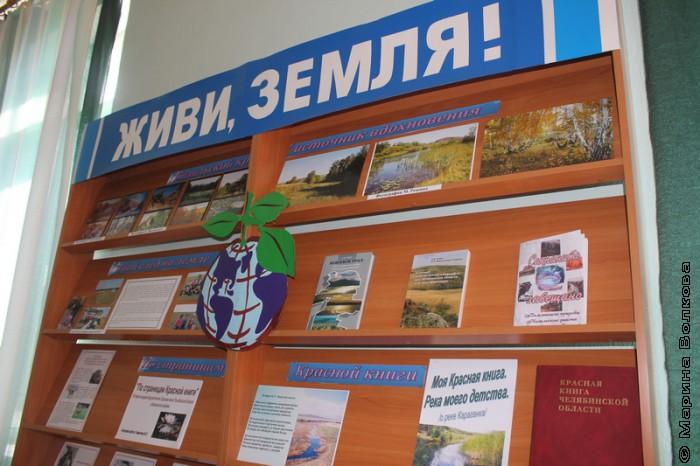 В Кизильской районной библиотеке