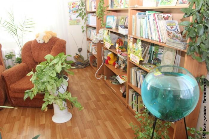 Библиотека в селе Кизильском