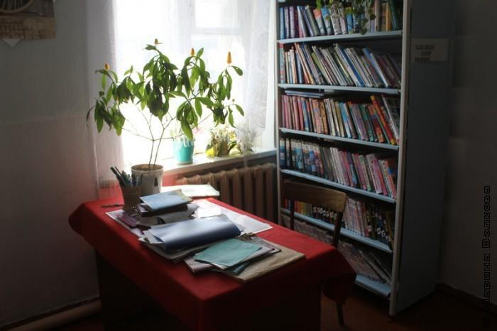 В библиотеке Усть-Багаряка