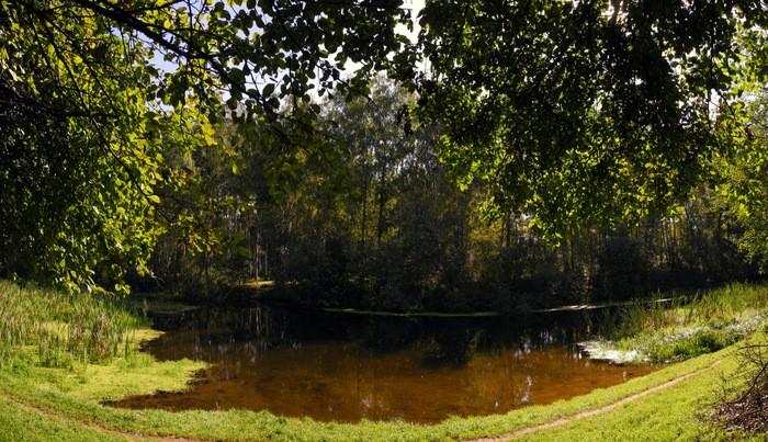 Речка Клязьма