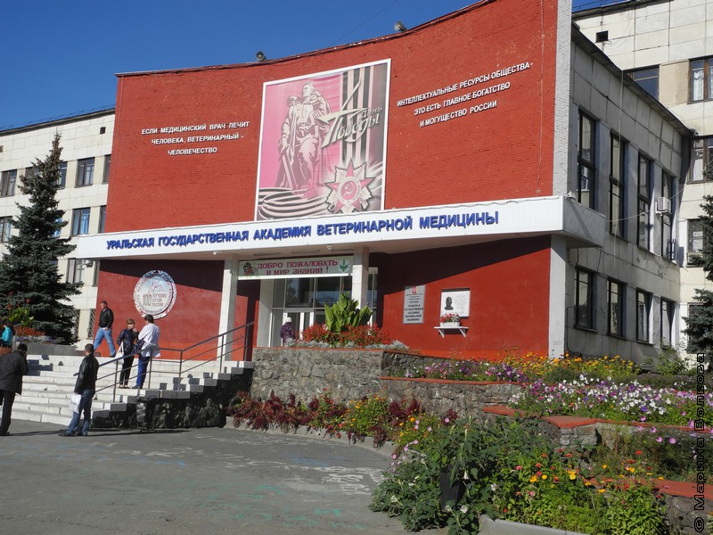 Список Пугачева в Троицке