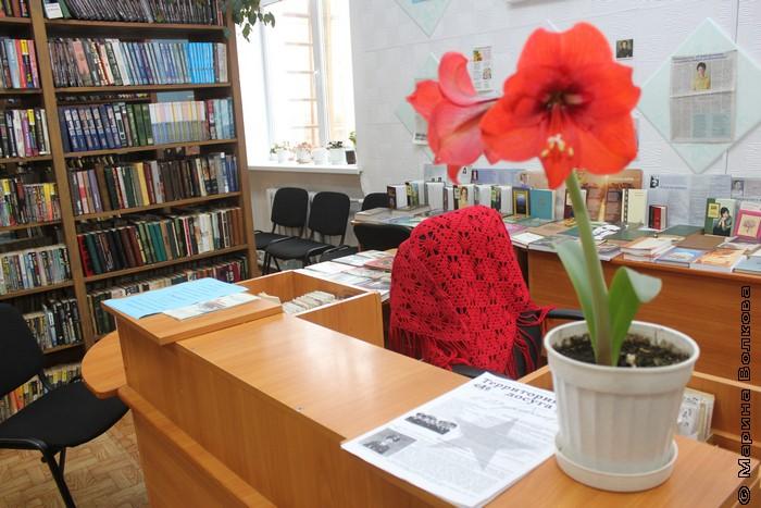 Библиотека Межевого