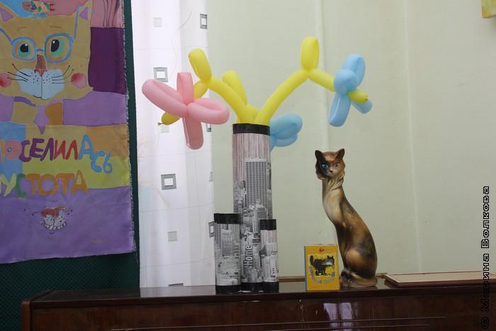 """Открытие выставки """"Кошкин дом"""""""