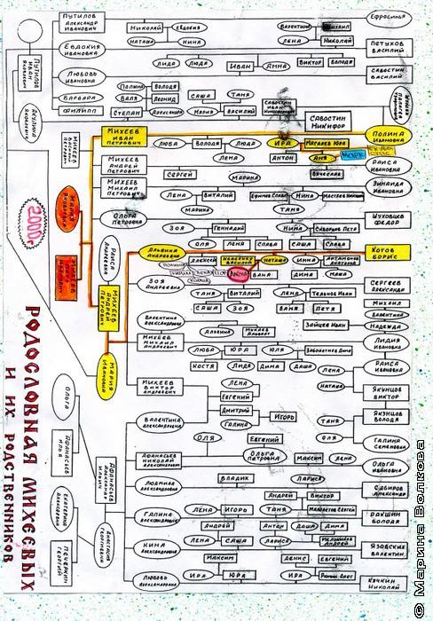 Генеалогическое древо семьи Ивасенко
