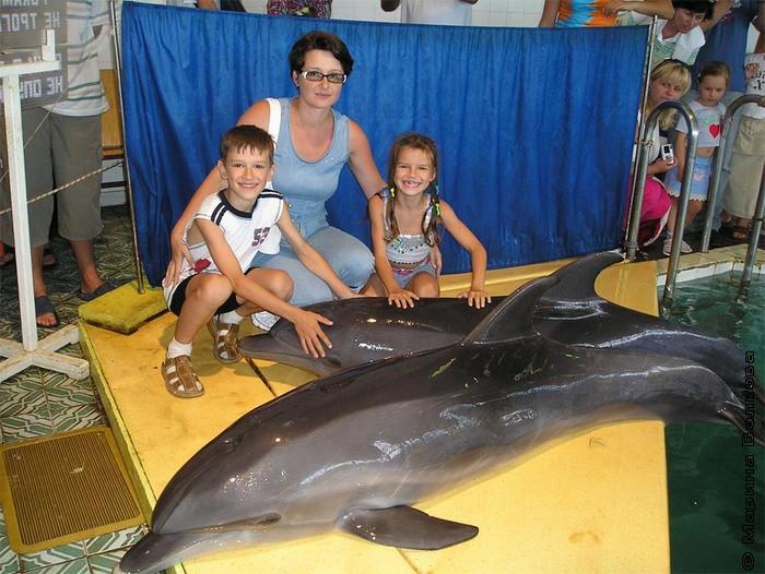 С дельфином
