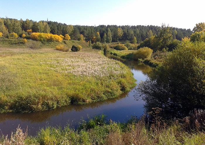 Придворная речка