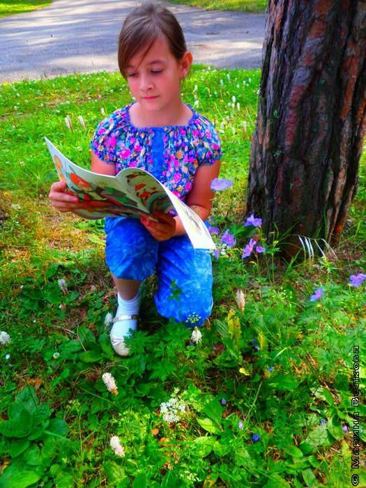 Детская библиотека №13