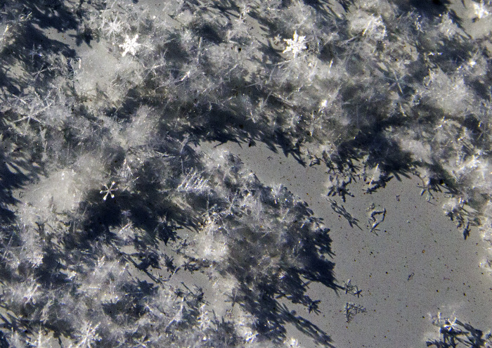 Тени снежинок