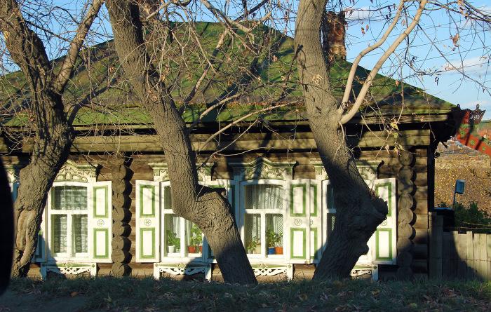Дерево и деревня