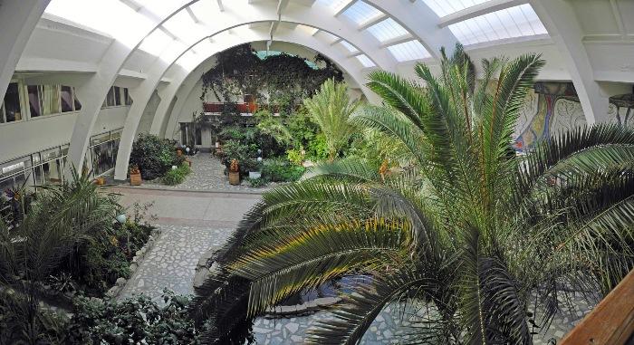 Зимний сад в Рефтинском
