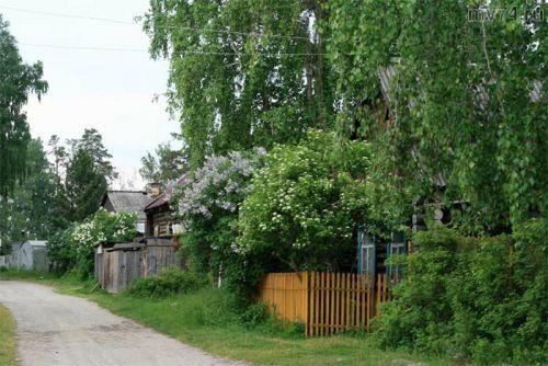 Деревня Аракуль