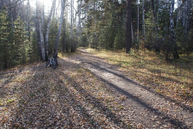 Осень в Челябинске