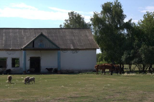 Сельский клуб, д.Азналино