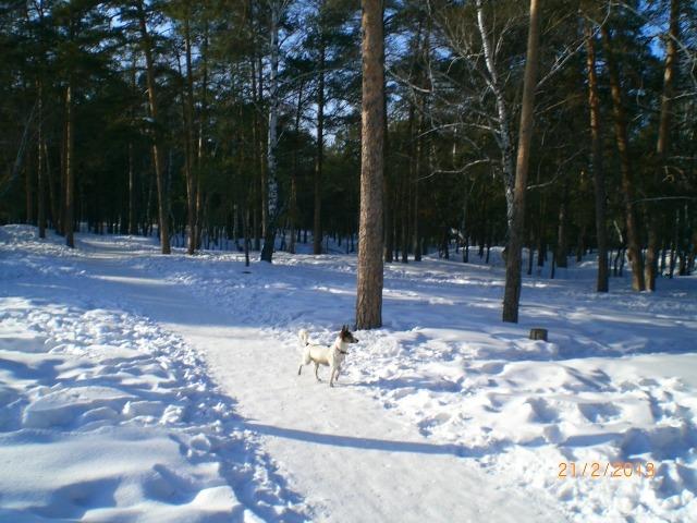 Парк им. Гагарина в Челябинске