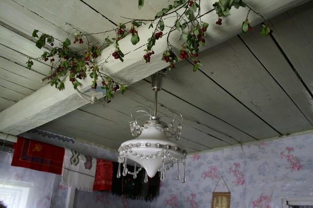 Вишня сушится под потолком