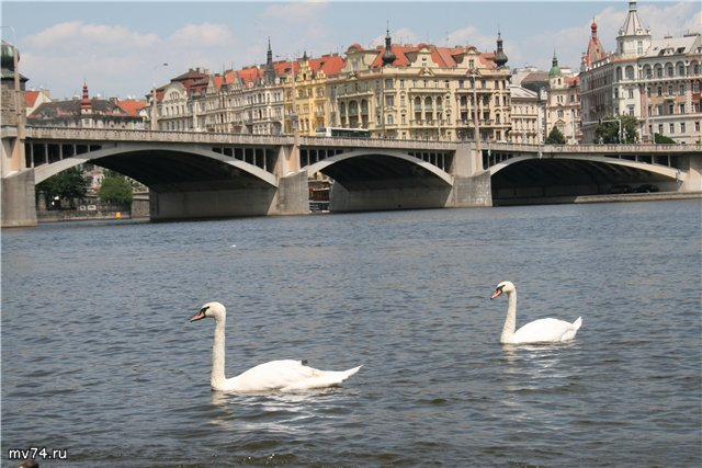 Влтава, Прага, Чехия