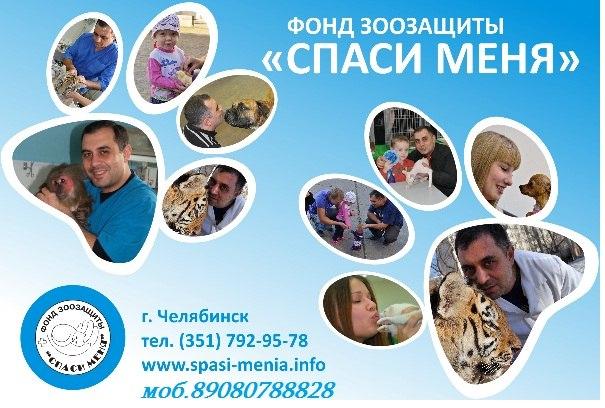 Музей Спасённых животных