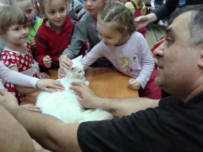 Кошкин день в детской библиотеке!