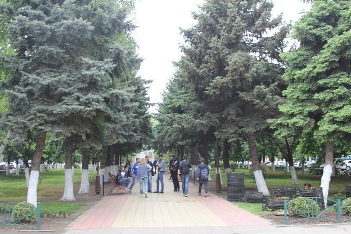 armavav-034