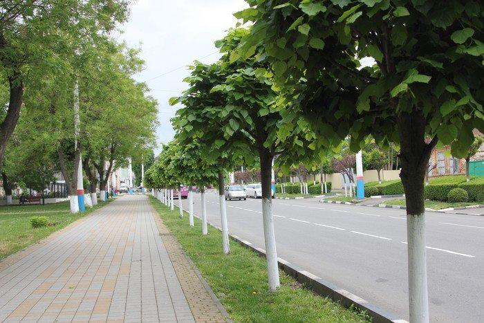 armavav-048