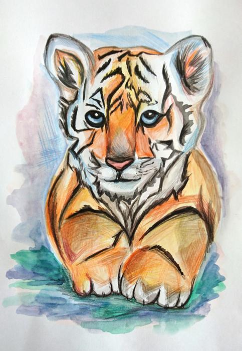 «Тигриная тропа» — творческий конкурс. Часть 22